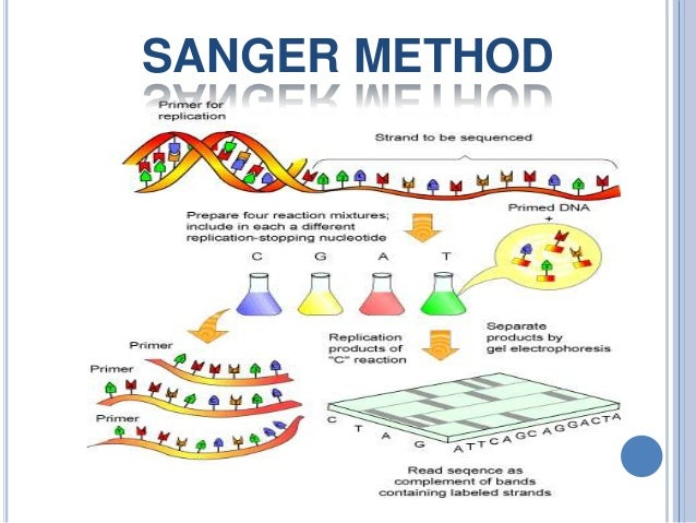 OMICS Group : eBooks :: DNA Sequencing, Sanger and Next-Generation ...