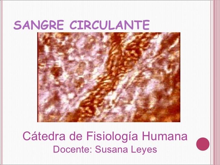 SANGRE CIRCULANTE Cátedra de Fisiología Humana  Docente: Susana Leyes