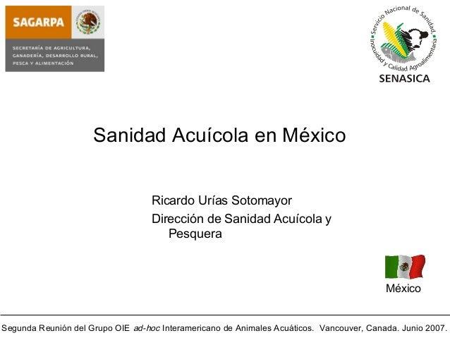 Segunda Reunión del Grupo OIE ad-hoc Interamericano de Animales Acuáticos. Vancouver, Canada. Junio 2007. Sanidad Acuícola...