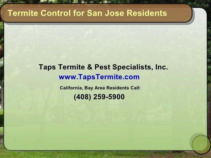 Termite Control for San Jose Residents            Taps Termite  Pest Specialists, Inc.             www.TapsTermite.com    ...
