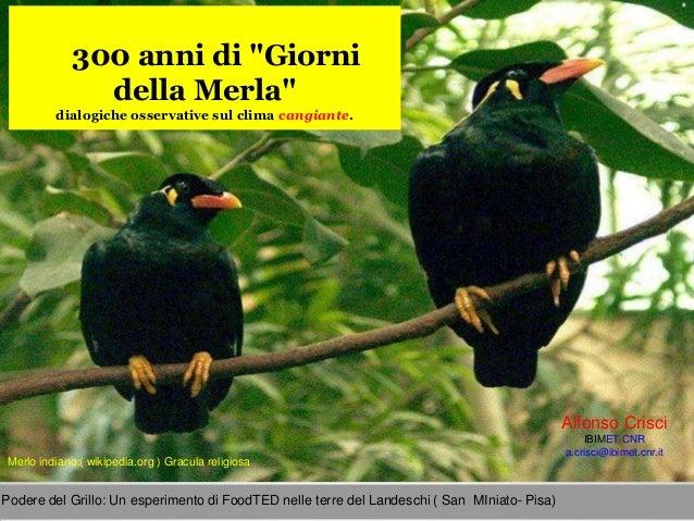 """300 anni di """"Giorni              della Merla""""         dialogiche osservative sul clima cangiante.                         ..."""