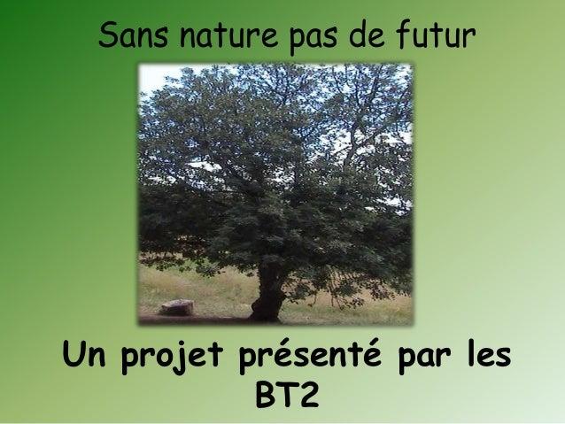 Un projet présenté par les BT2