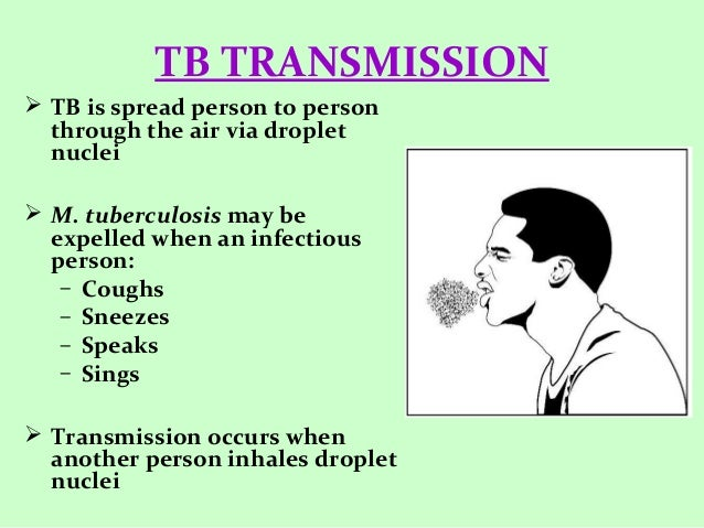 an introduction to the issue of bovine tuberculosis mycobacterium bovis The mycobacterium tuberculosis  mycobacterium bovis, mycobacterium  the responsibility for recovery shifted from patients to doctors with the introduction of.