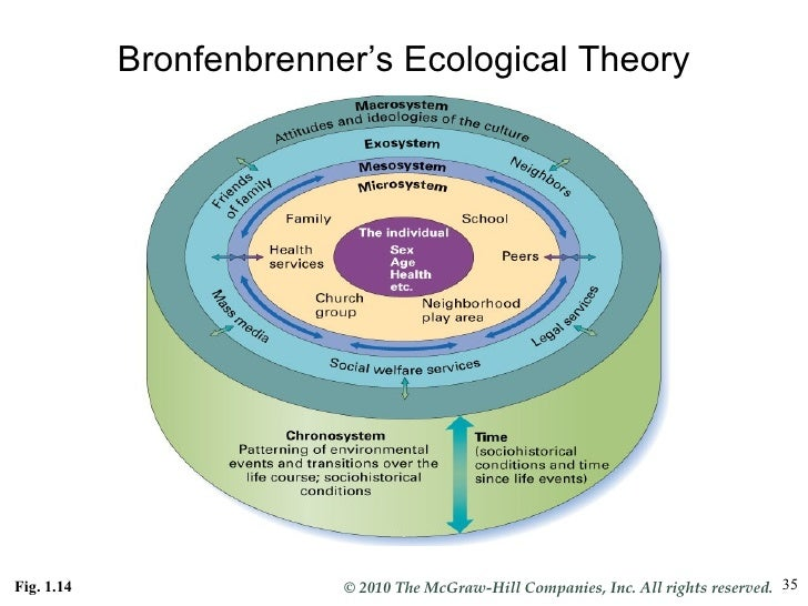 What is Bronfenbrenner's ecological theory of development?
