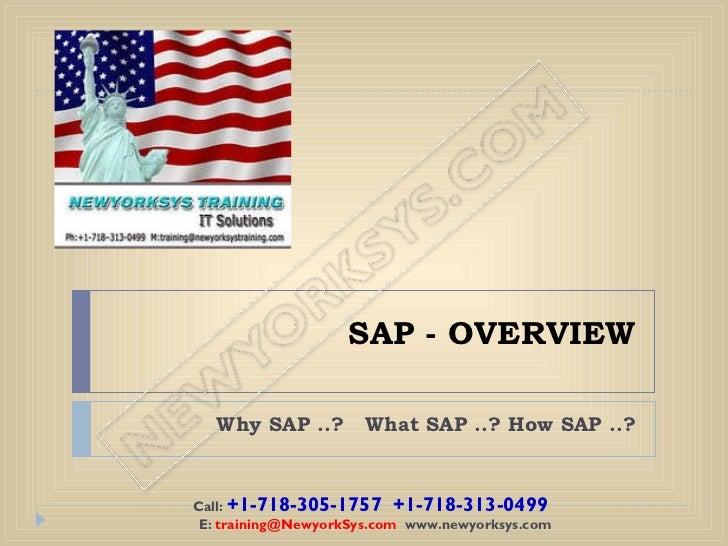 SAP - OVERVIEW Why SAP ..?  What SAP ..? How SAP ..? Call:  +1-718-305-1757 +1-718-313-0499 E:  [email_address]   www.ne...