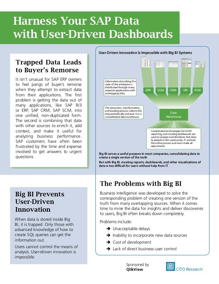 Harness Your SAP Data