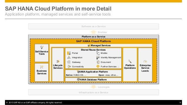 software development on the sap hana platform pdf