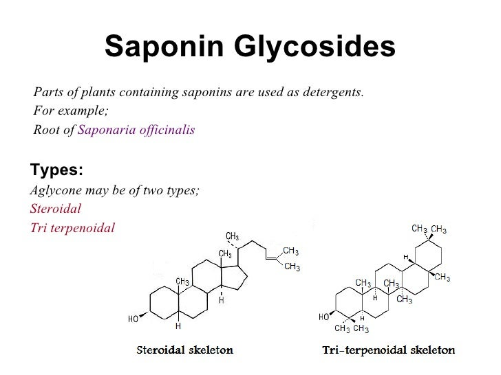 Saponin Glycosides <ul><li>Parts of plants containing saponins are used as detergents.  </li></ul><ul><li>For example; </l...