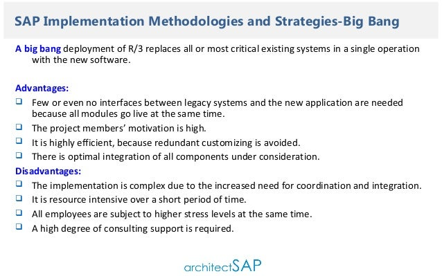 Sap implementation and strategies basic guidelines for project manag