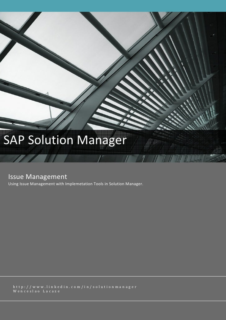 Sap Solman Charm Issue Management