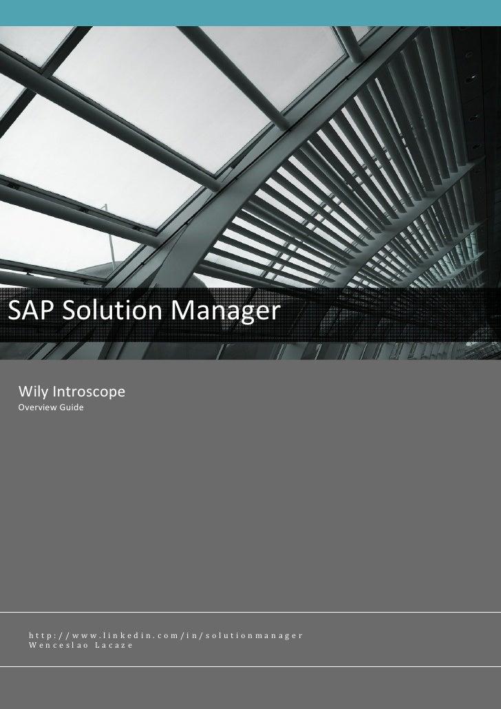 Sap Solman Introscope Overview V2.0