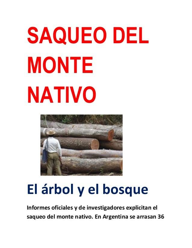 SAQUEO DELMONTENATIVOEl árbol y el bosqueInformes oficiales y de investigadores explicitan elsaqueo del monte nativo. En A...