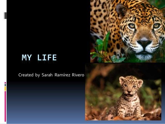 MY LIFE Created by Sarah Ramírez Rivero