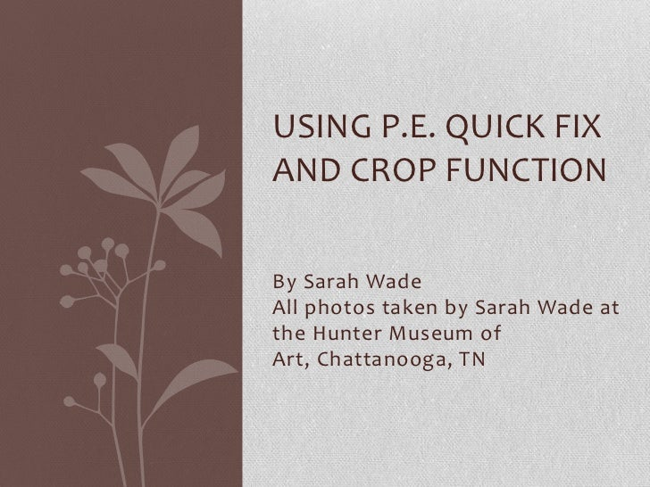 USING P.E. QUICK FIXAND CROP FUNCTIONBy Sarah WadeAll photos taken by Sarah Wade atthe Hunter Museum ofArt, Chattanooga, TN
