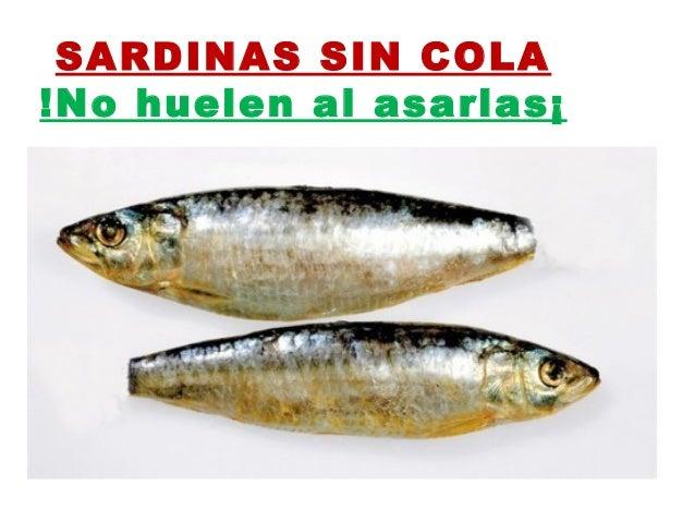 Sardinas sin cola