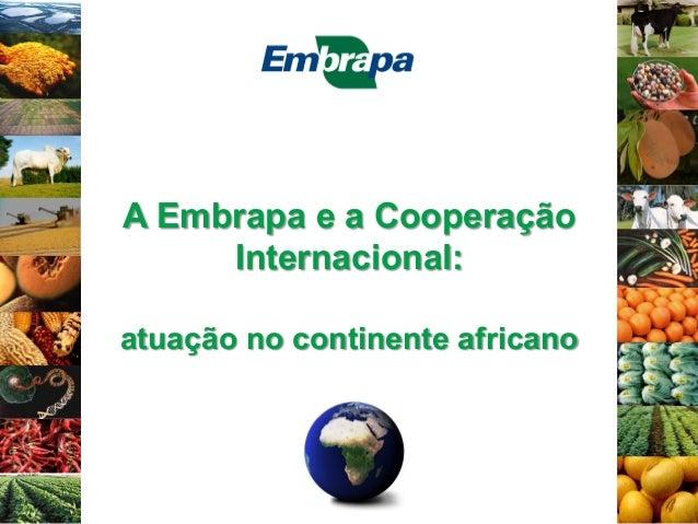 A Embrapa e a Cooperação Internacional: atuação no continente africano