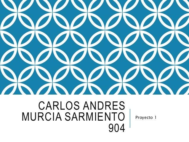 CARLOS ANDRES MURCIA SARMIENTO 904 Proyecto 1