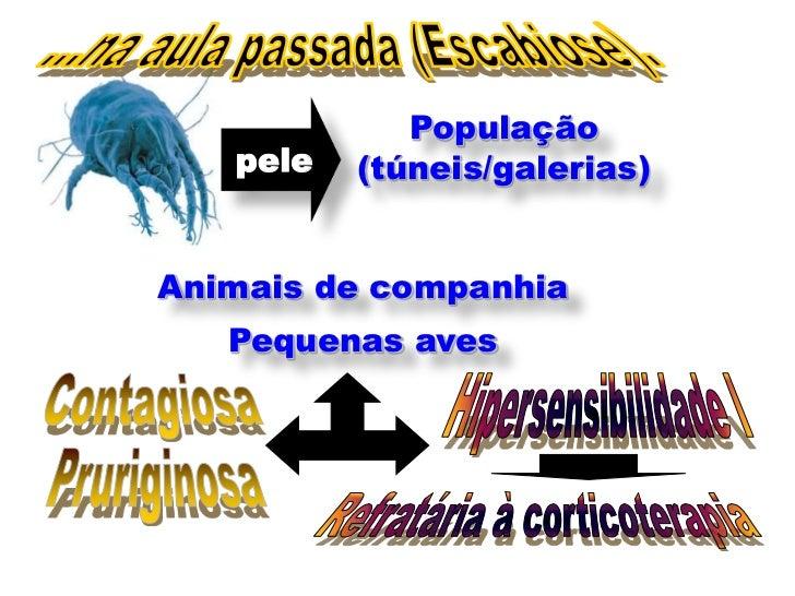 População   pele   (túneis/galerias)Animais de companhia   Pequenas aves