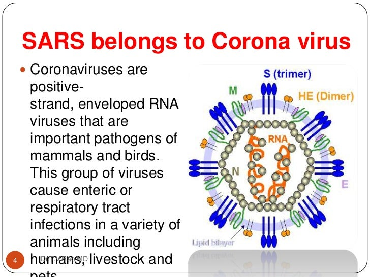 an introduction to the issue of severe acute respiratory syndrome virus sars Severe acute respiratory syndrome or except for the introduction of a new viral respiratory severe respiratory acute syndrome) virus.