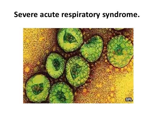 From SARS coronavirus to novel animal and human coronaviruses
