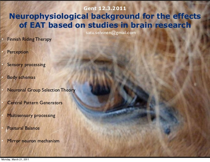 Gent 12.3.2011     Neurophysiological background for the effects       of EAT based on studies in brain research          ...