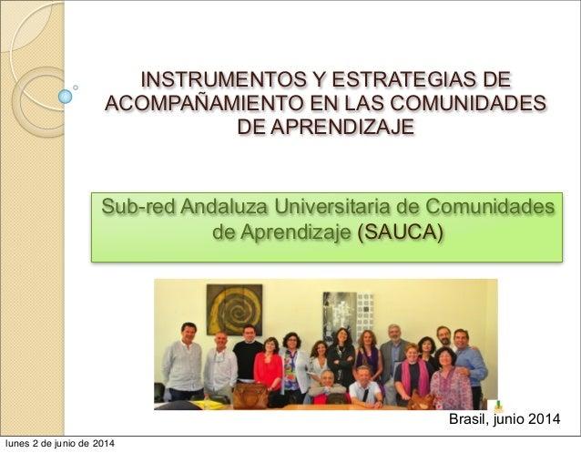 INSTRUMENTOS Y ESTRATEGIAS DE ACOMPAÑAMIENTO EN LAS COMUNIDADES DE APRENDIZAJE Sub-red Andaluza Universitaria de Comunidad...