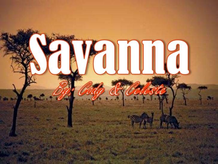 Savanna presentation 1 26-12
