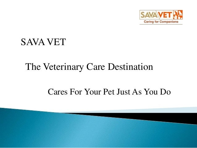 SAVA VET  The Veterinary Care Destination Cares For Your Pet Just As You Do