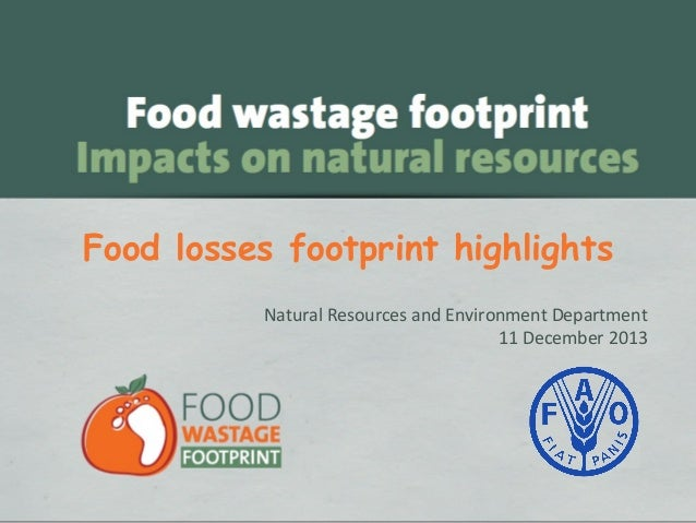 Food losses footprint highlights Natural Resources and Environment Department 11 December 2013