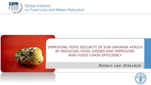 Improving food security in sub-Saharan Africa by reducing food losses and improving agri-food chain efficiency