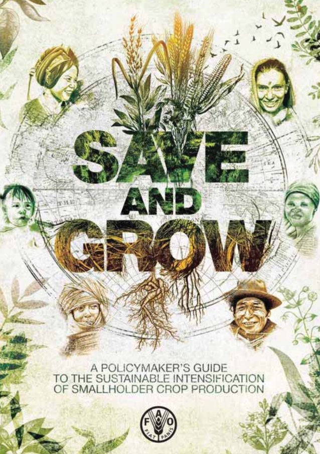 Save & grow - A policymaker's guide to the sustainable intensification of small holder crop production.
