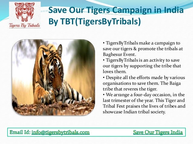 Save Tiger Essay for Students and Kids in English