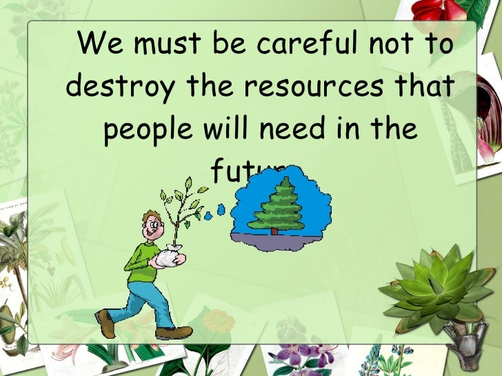 essay about saving the forests Amazon rainforest essays the amazon rainforest is the world.