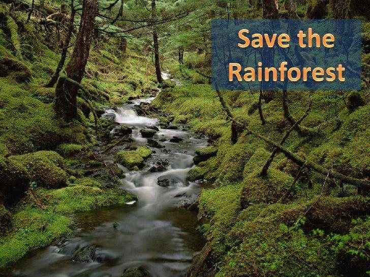Save the rainforest sample