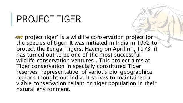 essay to save indian tiger