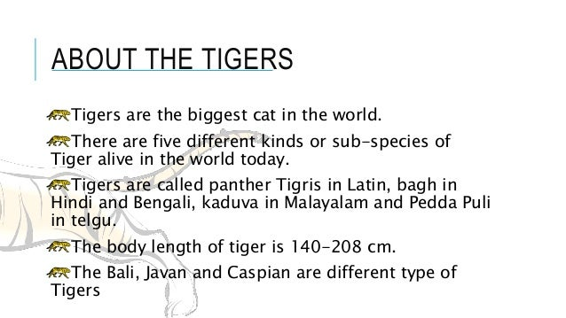 Save the tigers for class ix 9.
