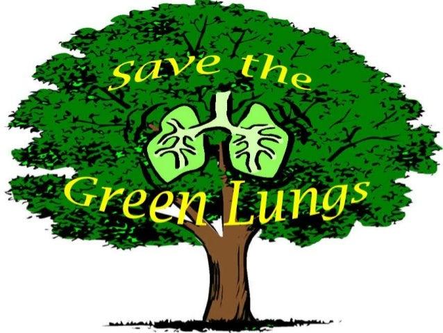 eech on save tree save life - 1829006 - Meritnationcom