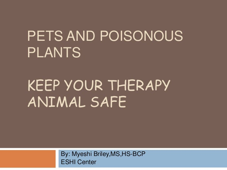PETS AND POISONOUSPLANTSKEEP YOUR THERAPYANIMAL SAFE    By: Myeshi Briley,MS,HS-BCP    ESHI Center