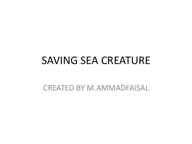 SAVING SEA CREATURE CREATED BY M.AMMADFAISAL