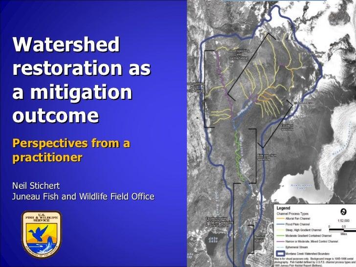 Watershed Restoration by Neil Stichert