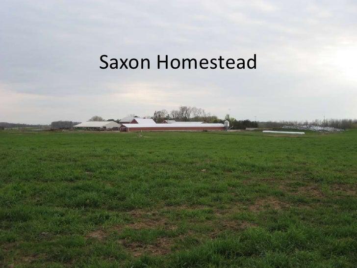 Saxon homestead