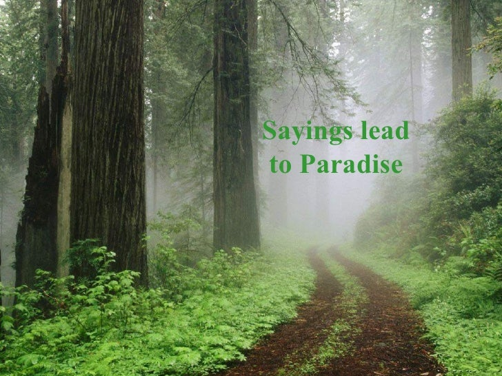 Sayings lead to Paradise