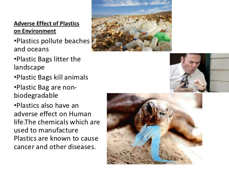 essay on plastics and environment View this essay on plastic bags & the environment the city of san francisco banned traditional plastic bags in november 2007 according to an article in the.