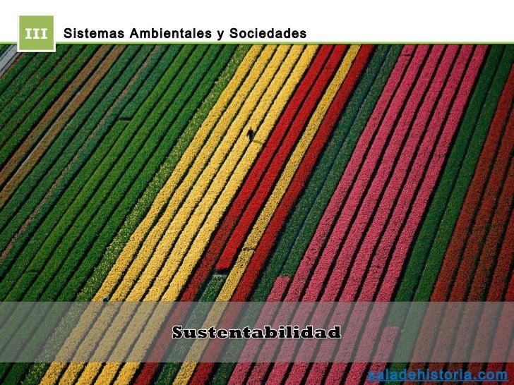 III   Sistemas Ambientales y Sociedades                                          saladehistoria.com
