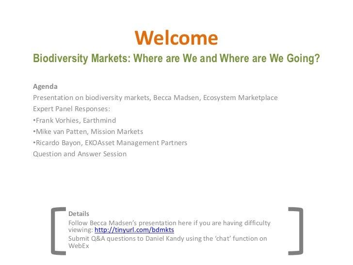 Sb.com webinar presentation 04012011