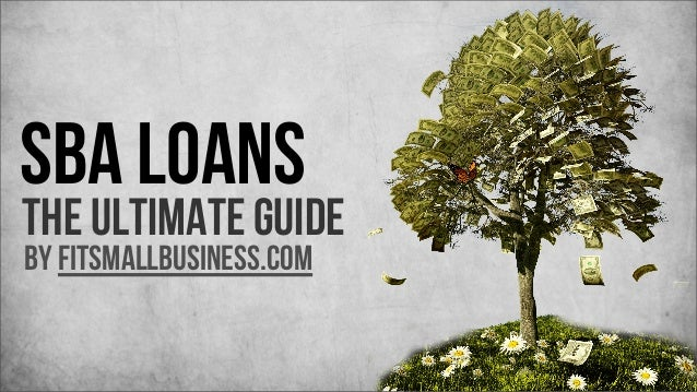 SBA Loans  The Ultimate Guide by FitSmallBusiness.com