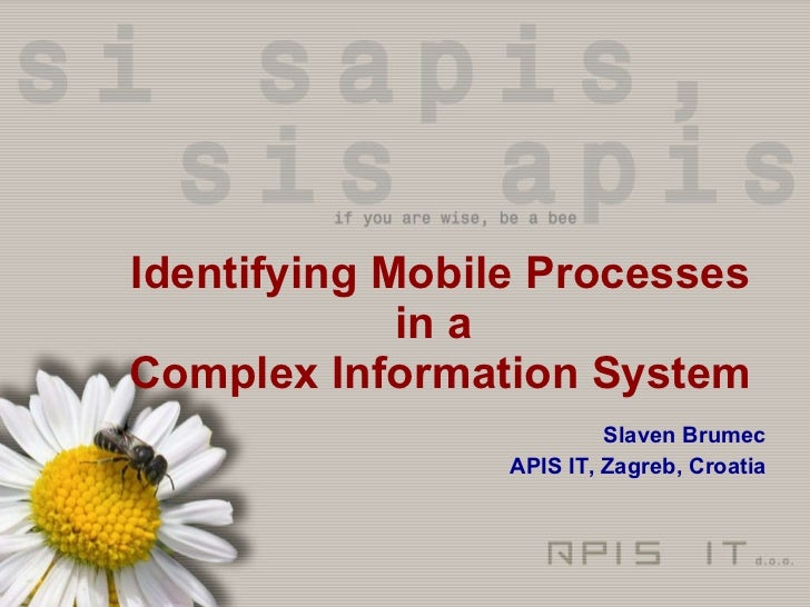 Identifying Mobile Processes in a  Complex Information System Slaven Brumec APIS IT, Zagreb, Croatia