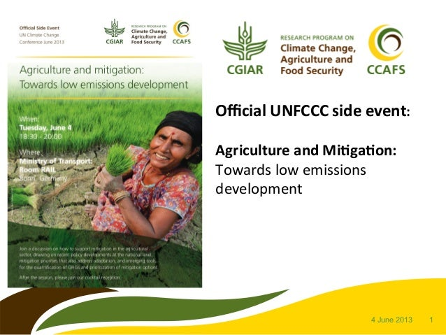 14 June 2013 Official UNFCCC side event:   Agriculture and Mi8ga8on: Towards low emissions develop...