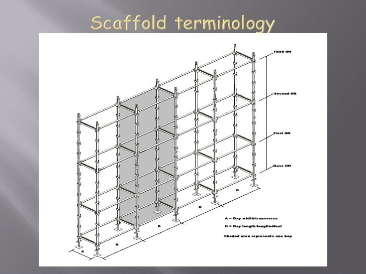 Scaffolding Sizes Standard : Scaffold classes and duties cals