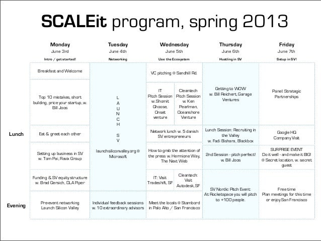 SCALEit Ignite Spring 2013